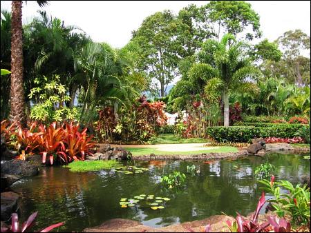 Dole Plantation - Garden